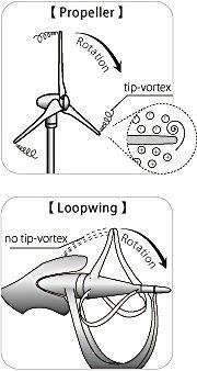 loopwing-12.jpg